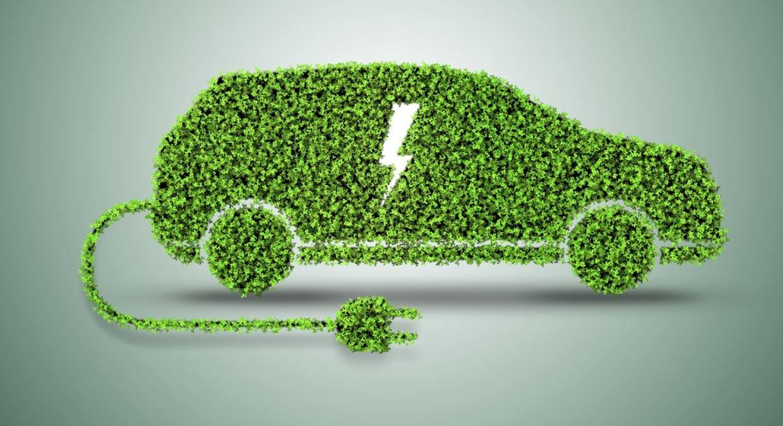 Tutte le auto elettriche ed ibride a Company Car Drive